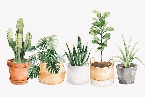 plant art 2.jpg