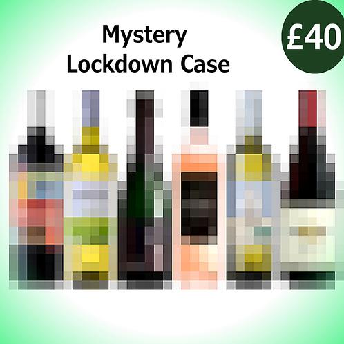 Mystery Lockdown Case