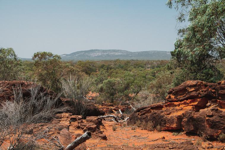 Gundabooka, NSW