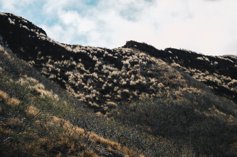 Diamond Head Trail, Waikiki