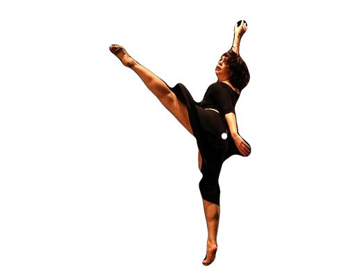 Festival Funarte Acessibilidança - Companhias de dança da Região Norte abrem temporada