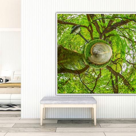 Video showing Circular Abstract Art Photographs as home decor.