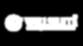 Logo Wellssuite Centro Medico