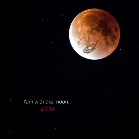 Roter Mond Zyklustag 14.jpg