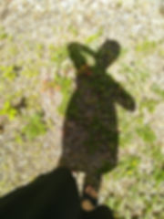 Frauenkaraut 20.jpg
