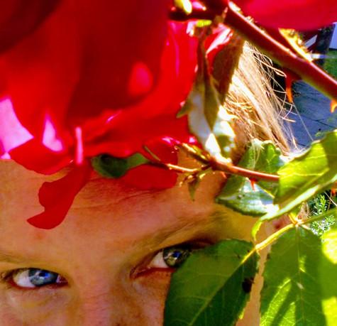 Rosen Blick
