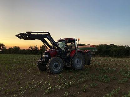 GILBERT Tracteur en coucher de soleil.jp