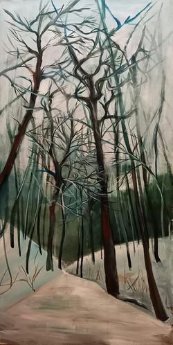 stromy_park Cibulka