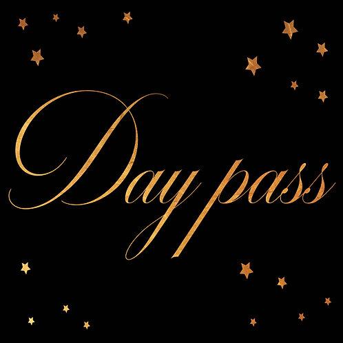 DAY PASS (pass journée)