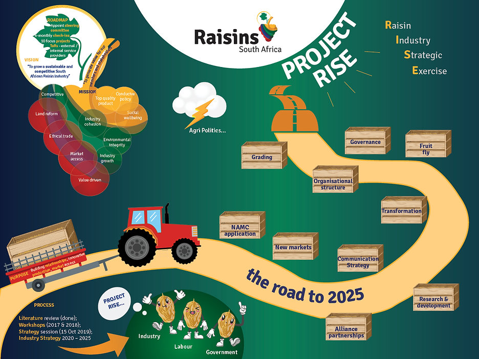 Raisins SA Infographic_Web Usage.jpg