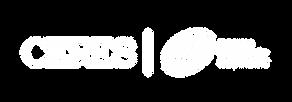 Logo-ESRyCERES-blanco.png