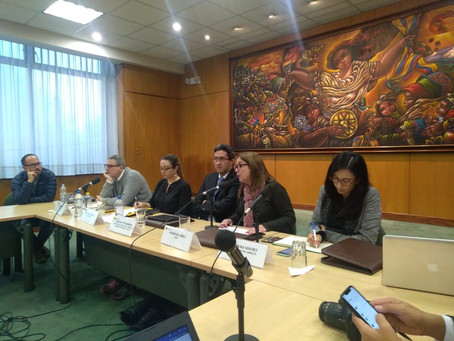 CERES participó como panelista en conversatorio sobre Economía Circular