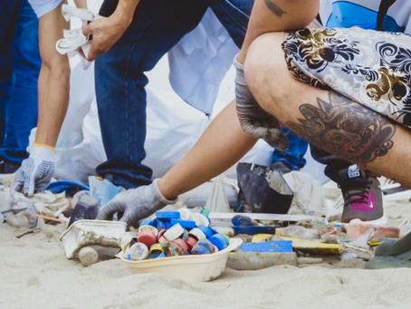 Corporación Maresa: Voluntarios recuperan 50 árboles en Quito y recolectan 395kg de basura en playas