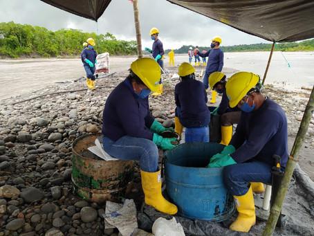 OCP ECUADOR: En el Oriente, la remediación ambiental y social alcanza el 60% de avance