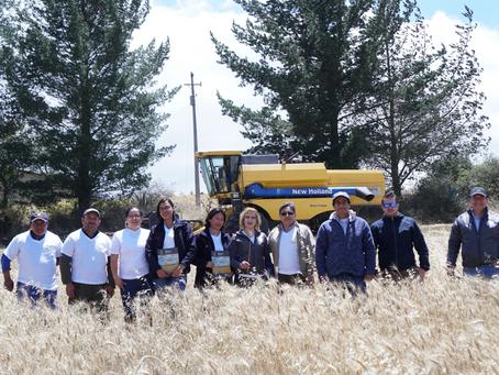 """Moderna Alimentos, a través de su programa """"Cultiva"""", benefició a más de 400 familias agricultoras c"""