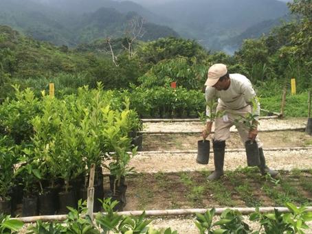 SOLGOLD fortalece su compromiso de  responsabilidad social en Ecuador