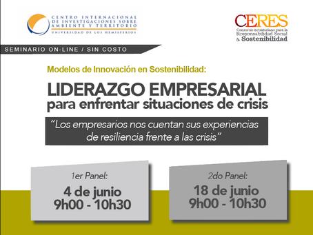 Seminario On-line Modelos de Innovación en Sostenibilidad: Liderazgo empresarial para enfrentar situ