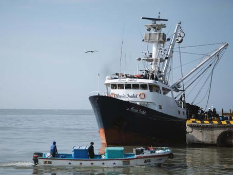 NIRSA promueve acciones sostenibles en pesca avaladas internacionalmente.