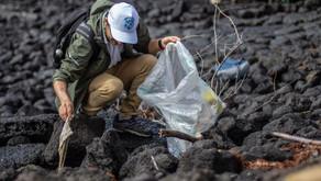 Conservación Internacional y Fundación Coca Cola en jornadas del Programa de Limpieza Costera 2