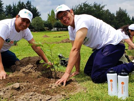 Corporación Maresa participa en alianza para incrementar el bosque urbano en la capital