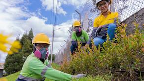 UNACEM: Empresas, agentes activos para mitigar el impacto ambiental