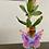 Thumbnail: Iridescent Acrylic single stem Butterfly Vase