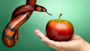 A Tarefa da Traição Virtuosa na Empresa Familiar