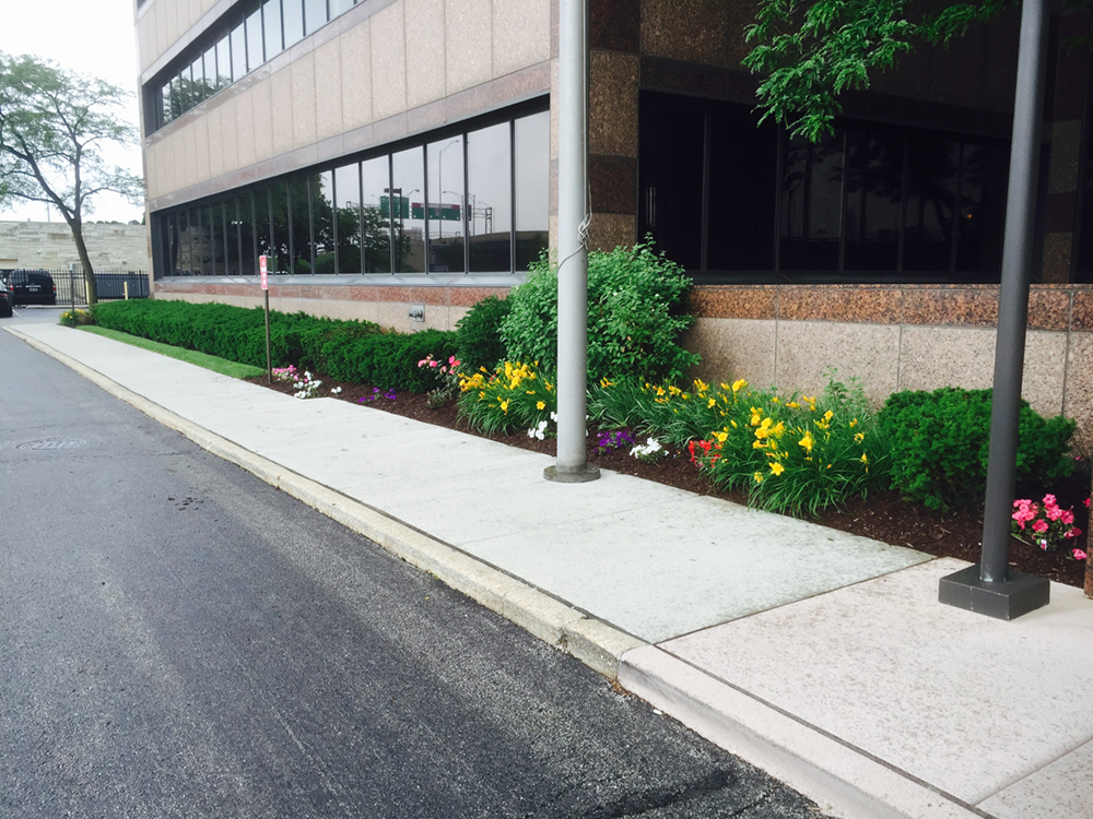 Corporate Landscape Install