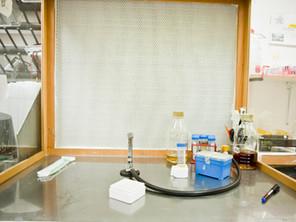 Israeli Scientists Work To Test Adapted New Avian Virus Vaccine Agains Human Coronavirus