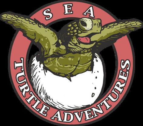 Sea-Turtle-Adventures