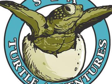 Sea Turtle Adventures
