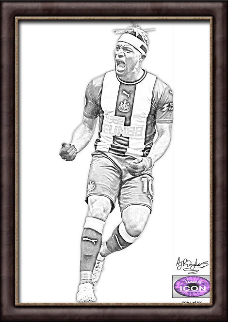 Allan Saint-Maximin - Newcastle United