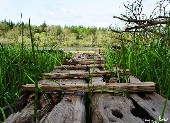 Vers le lac perdu