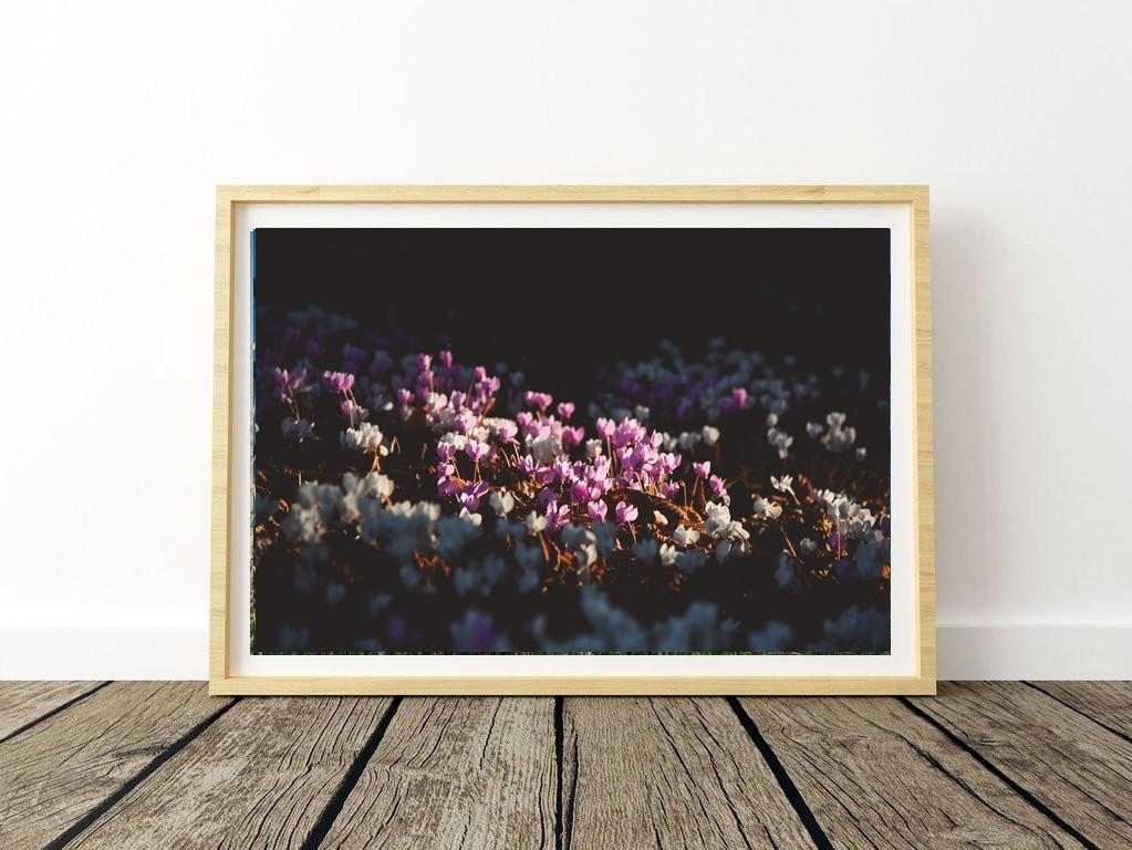 """petites fleurs"" - C.Viot"