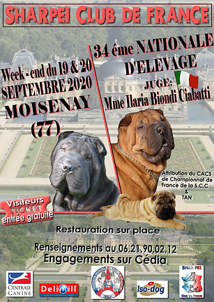 affiche nationale 2020.jpg