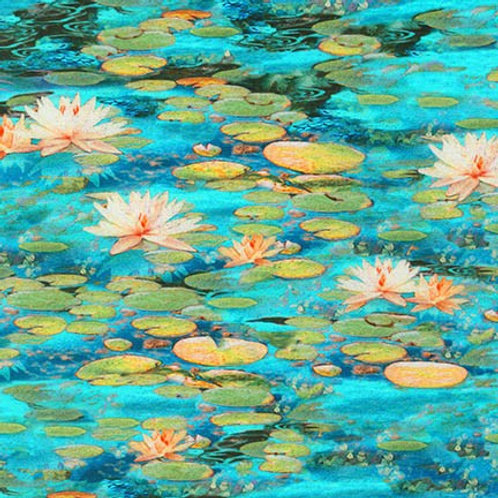 Water Lilies - Picture This