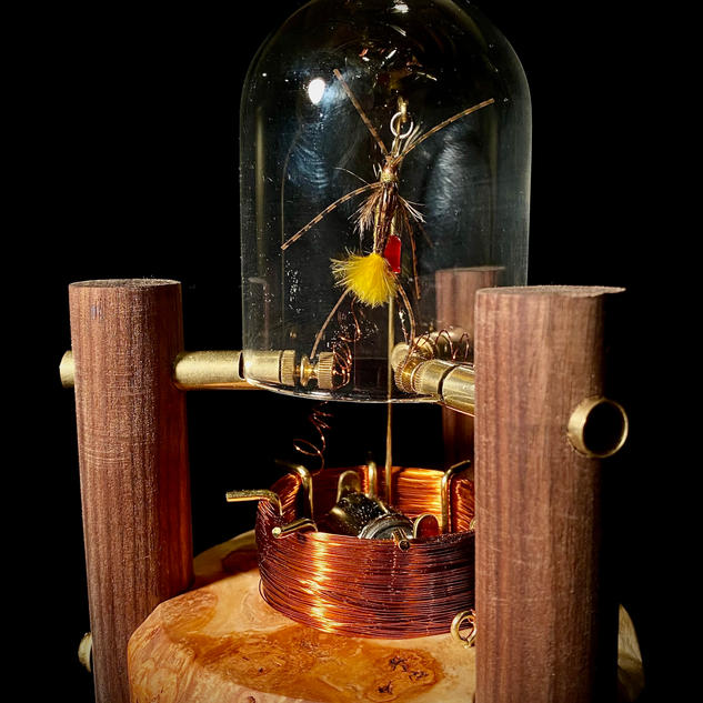 Lightning Bug Automata