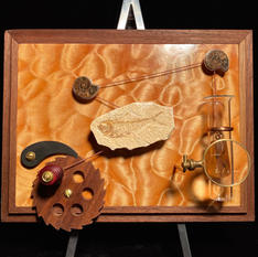 Fly in Amber Automata
