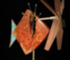 Mangrove Whirligig