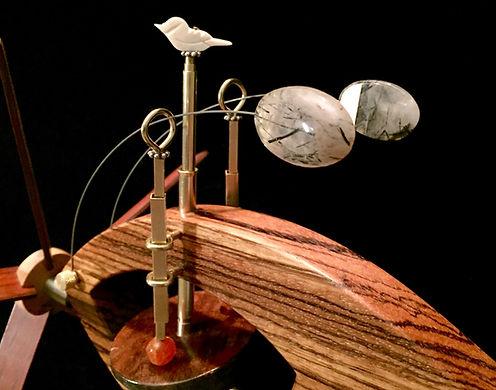 Plankton Whirligig