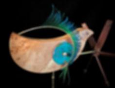 Peacock Whirligig.jpg