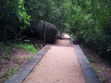 Write Path 247
