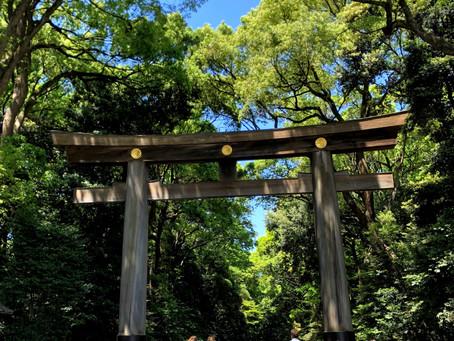 HARAJUKU: BETWEEN THE SACRED AND THE MUNDANE