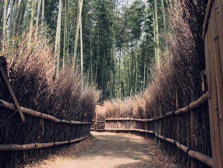 JAPAN: A JOURNEY INTO PARALLEL UNIVERSE