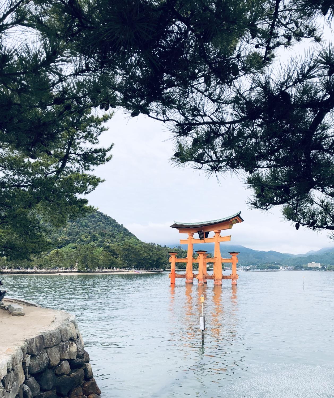 The great torii Miyajima island