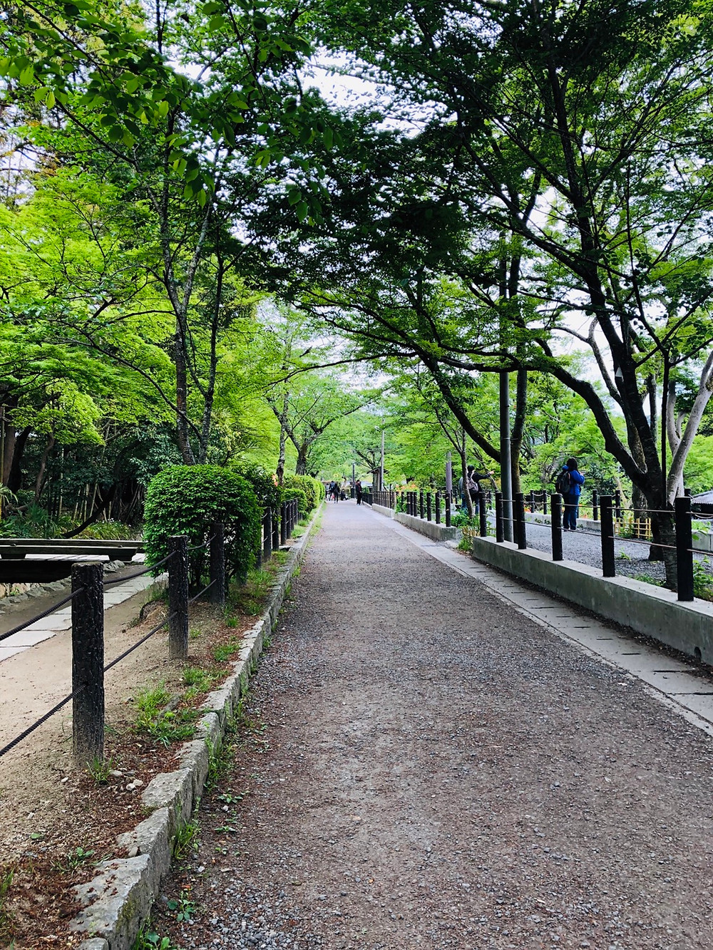 Inspiring Japan travel stories