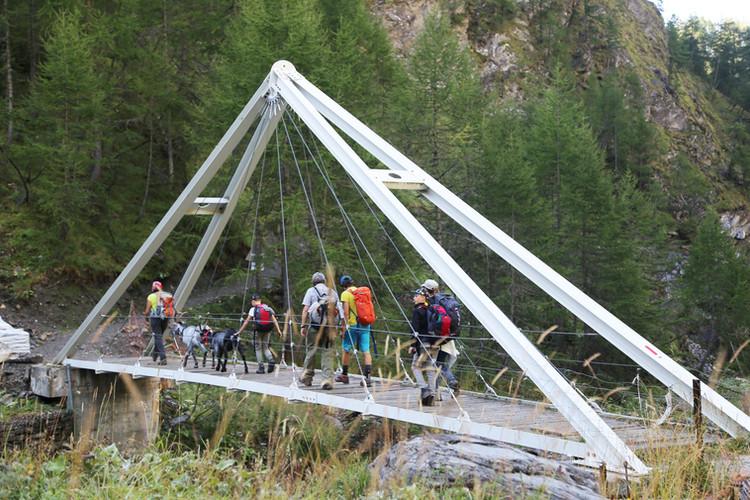 Über Stock, Stein und Brücken