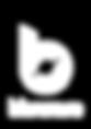 Bluware Logo - White-04_edited.png