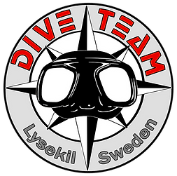 logo dive team 2020 RED.png