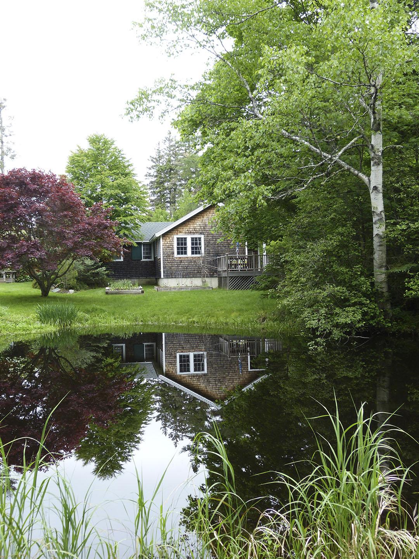 Spruce Cottage Pond